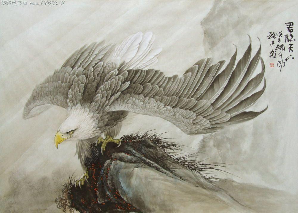 工笔鹰【君临天下】作画步骤